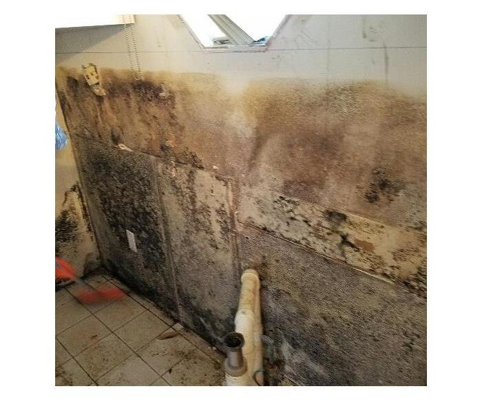 Water Damage and Mold Removal in Middle Island, NY Before