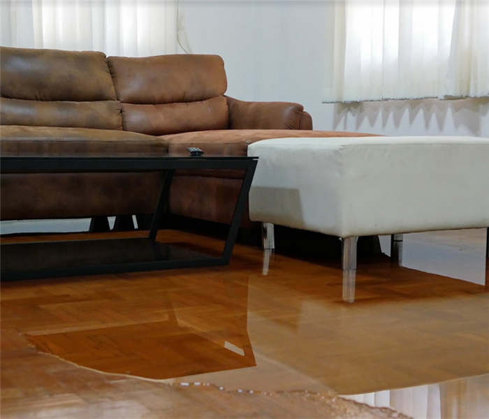 water pooling on parquet floor in front of couch