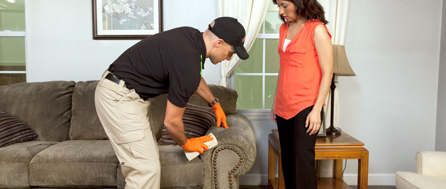 Patchogue, NY carpet upholstery cleaning